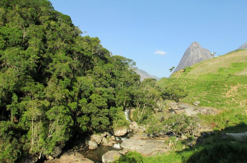 Härligt landskap av den gröna skogen, floden och slätt vaggar royaltyfri foto