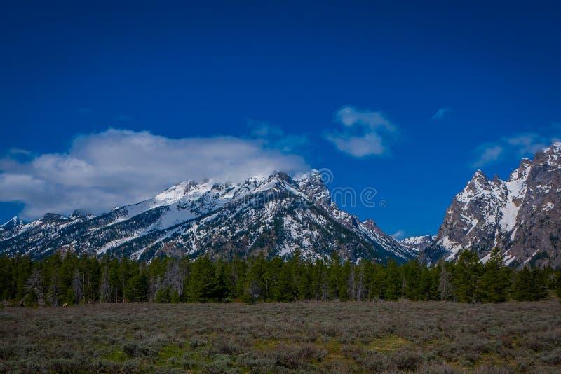 Härligt landskap av det storslagna Tetons området och maxima som lokaliseras inom den storslagna Teton nationalparken, Wyoming, m arkivfoto