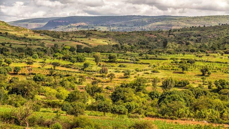 Härligt landskap av Harar arkivfoton