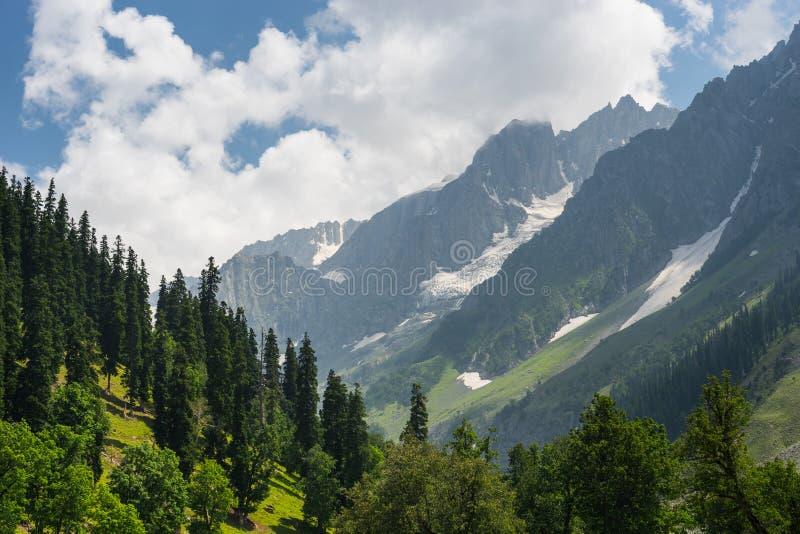 Härligt landskap av Sonamarg i sommar, Srinagar, Jammu Kashm royaltyfria foton