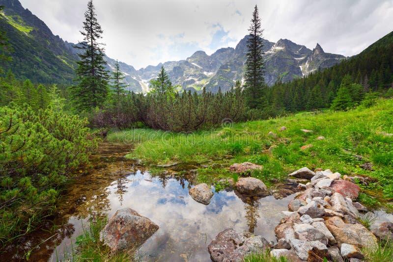 Härligt landskap av Tatra berg royaltyfri bild