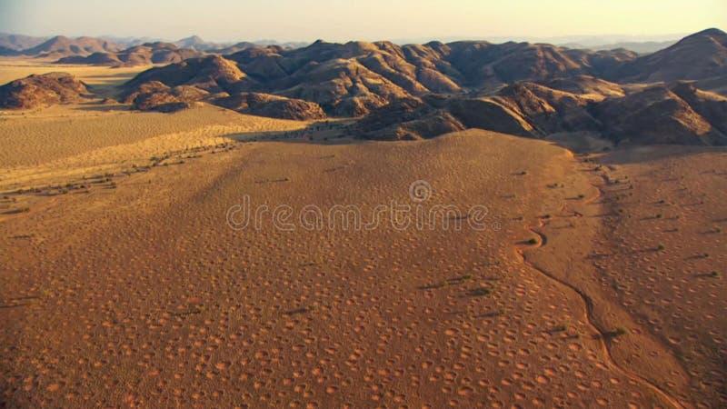 Härligt landskap i Kalahari med den stora röda dyn och ljusa färger arkivbild