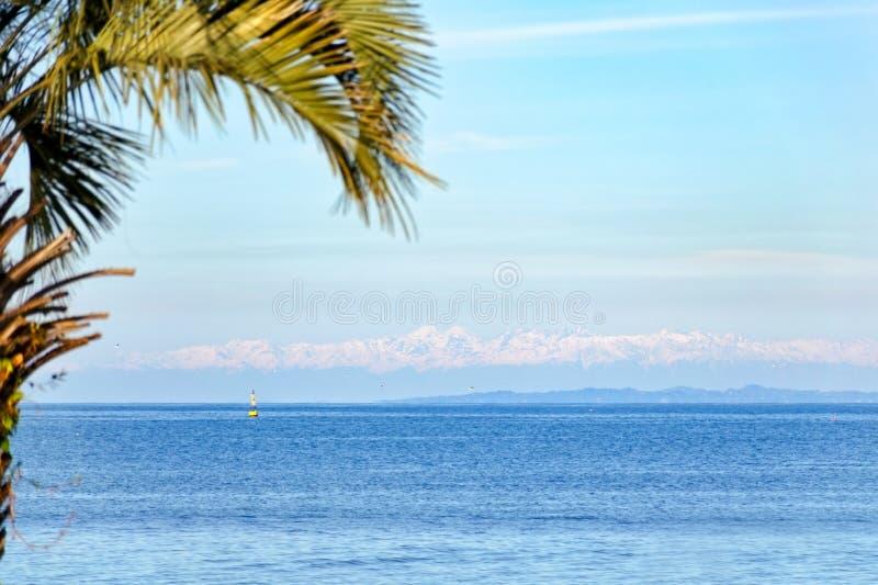 Härligt landskap - lugna hav mot bakgrunden av snö-korkade berg och palmträd royaltyfri foto