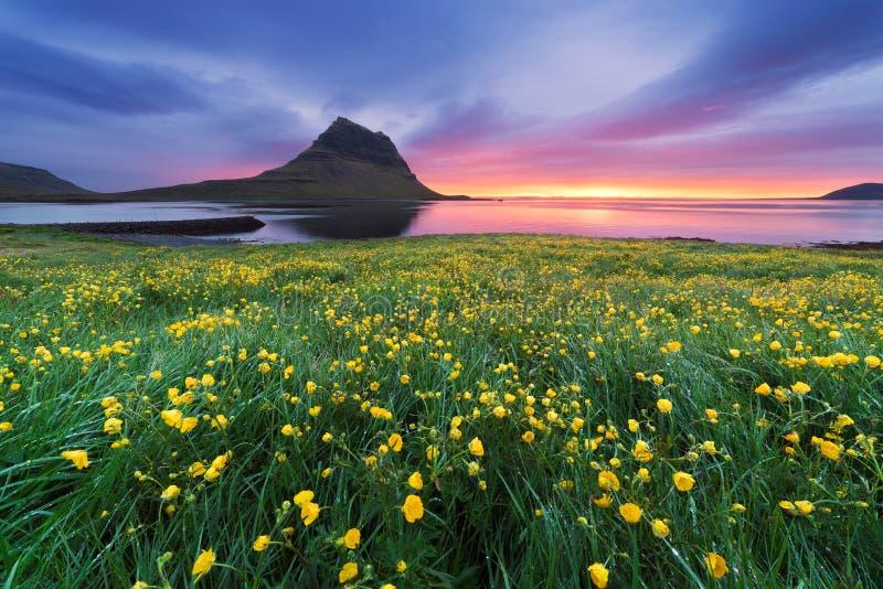 Härligt landskap med berget och havet i Island royaltyfria bilder