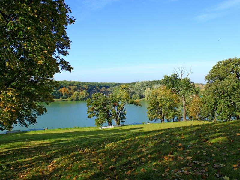 Härligt landskap med den pittoreska sjön och träd royaltyfria bilder