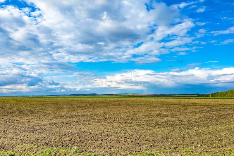 Härligt landskap med det gröna fältet och stora vita moln arkivfoton