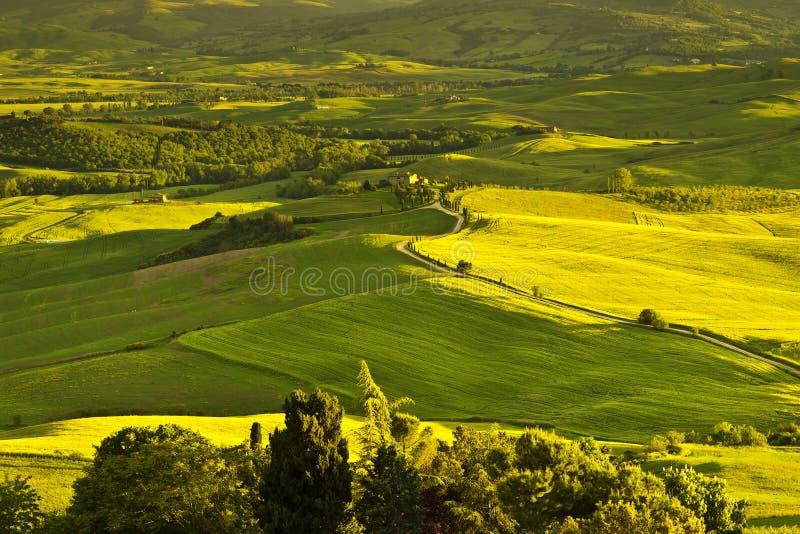 Härligt lantligt landskap av Tuscany italy royaltyfri bild