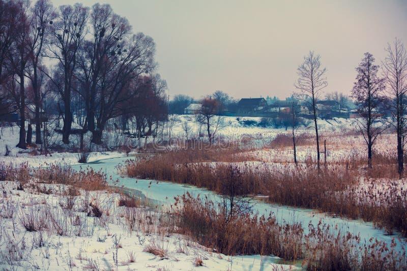 Härligt lantligt vinterlandskap arkivbild