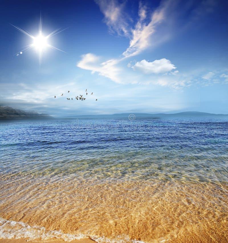 härligt lugnat klart crystal seashorevatten royaltyfria foton