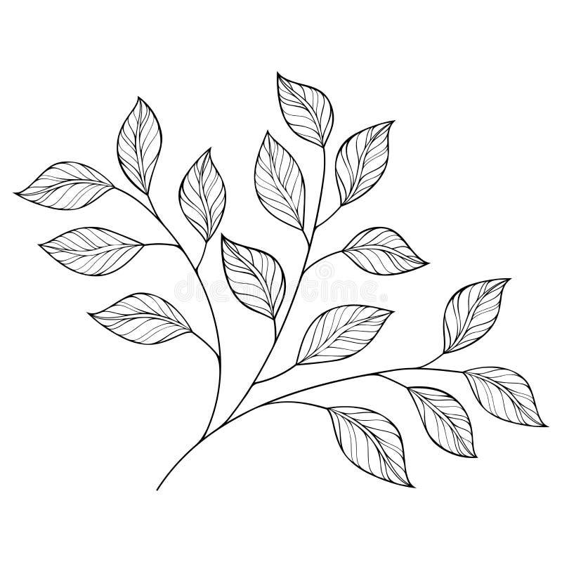 Härligt monokromt konturblad för vektor stock illustrationer