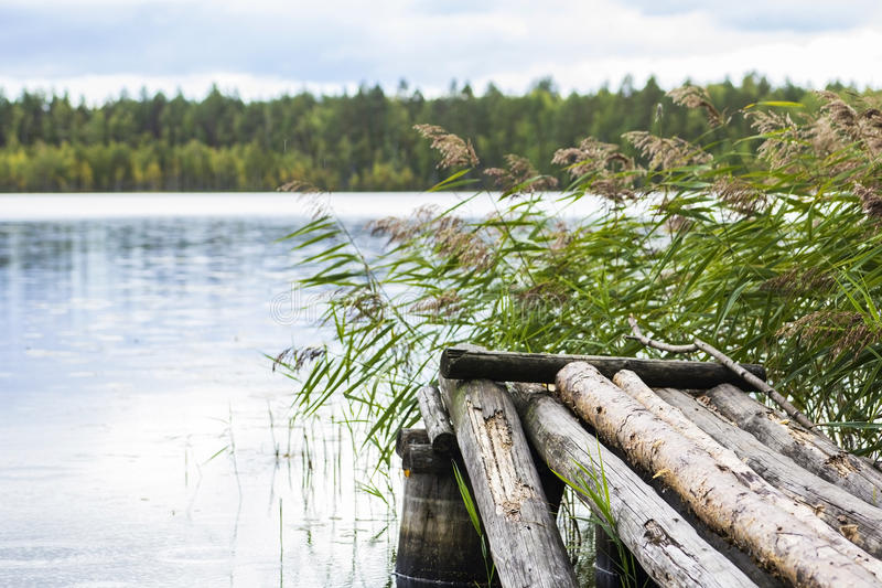 Härligt naturligt landskap med sikter av sjön och träbroarna arkivfoto