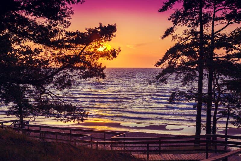 härligt over hav skjuten sommarsolnedgång royaltyfria bilder