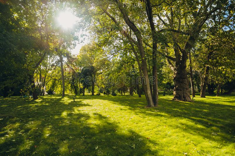 Härligt parkera parkerar offentligt med fältet för grönt gräs, den gröna trädväxten och en molnig blå himmel för parti arkivfoto