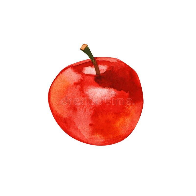 Härligt saftigt rött äpple som isoleras på vit bakgrund f?r flygillustration f?r n?bb dekorativ bild dess paper stycksvalavattenf vektor illustrationer