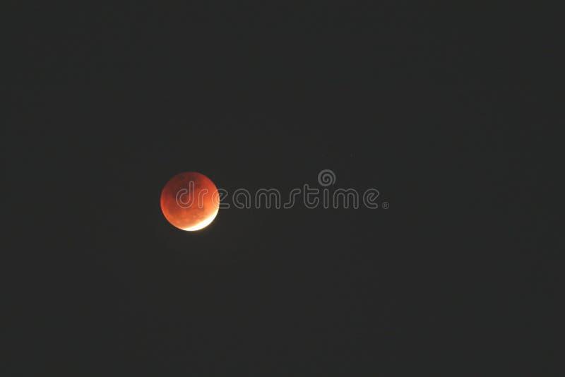 Härligt skott av den röda månen i den mörka himlen royaltyfria foton