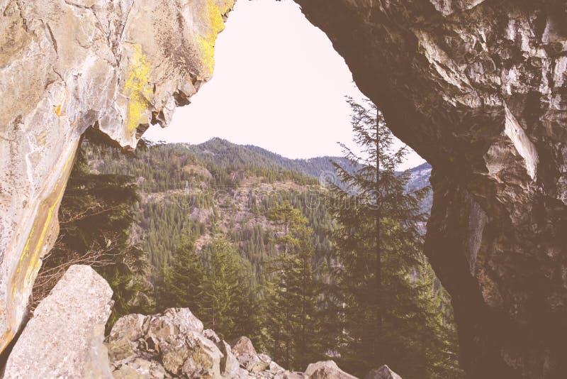 Härligt skott av höga steniga berg och en skog arkivfoto