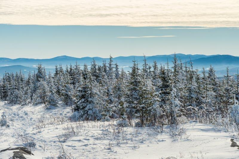 Härligt snöig landskap i Quebec, Kanada arkivbilder