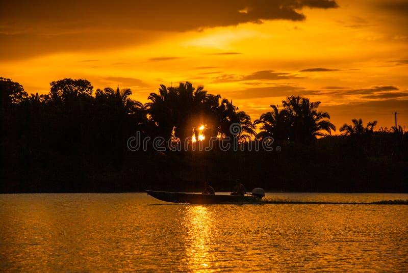 Härligt solnedgånglandskap som förbiser floden och amasondjungeln Manaus Amazonas, Brasilien royaltyfria bilder