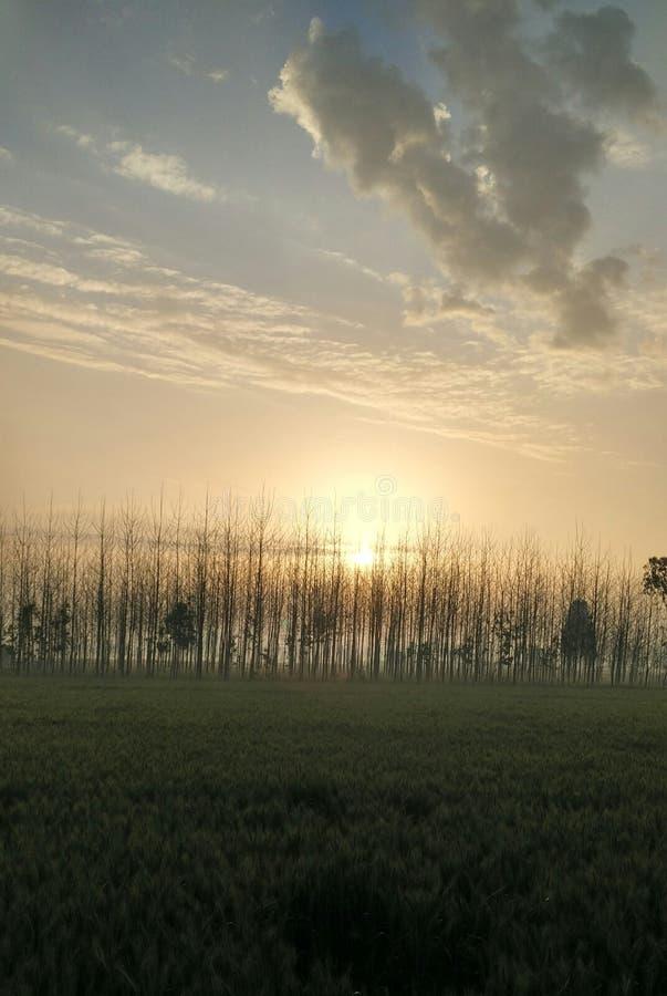 Härligt soluppgång/Morning landskap fotografering för bildbyråer
