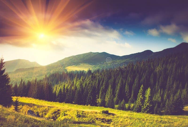 Härligt sommarberglandskap på solsken arkivfoto
