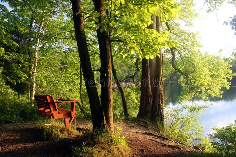 Härligt sommarlandskap i en delstatspark royaltyfri fotografi