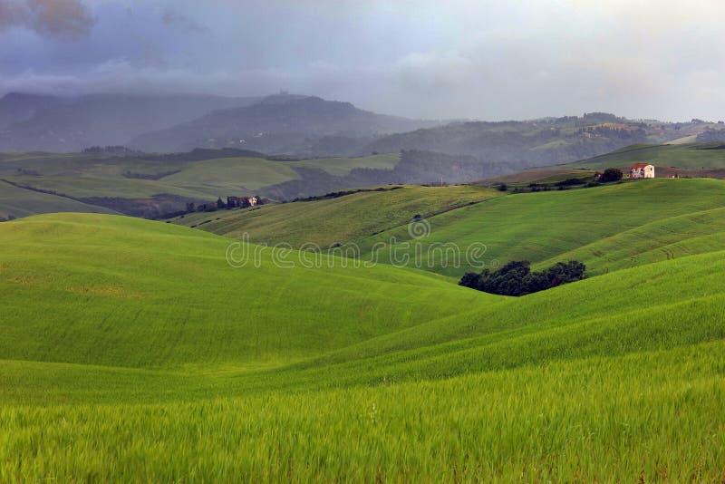 Härligt sommarlandskap i Tuscany i en stormig dag royaltyfri foto