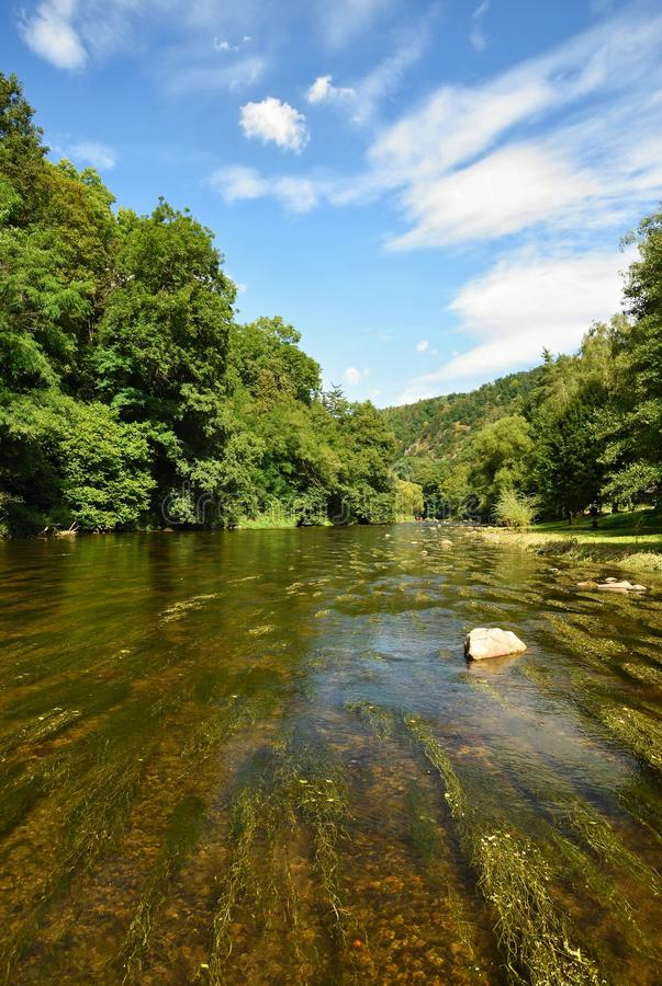 Härligt sommarlandskap med floden, skogen, solen och blåa himlar Naturlig bakgrund royaltyfri foto