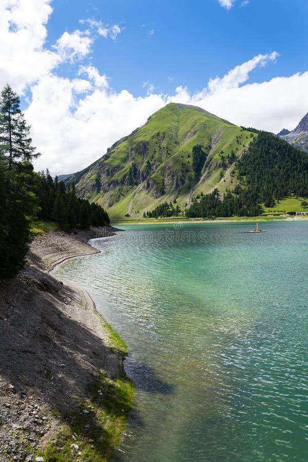 Härligt sommarlandskap med Monte Motto och sjön Livigno, Italien arkivfoton