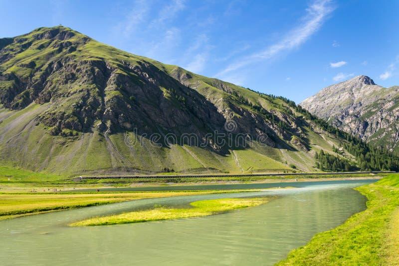 Härligt sommarlandskap med Monte Motto och sjön Livigno, Italien arkivbilder