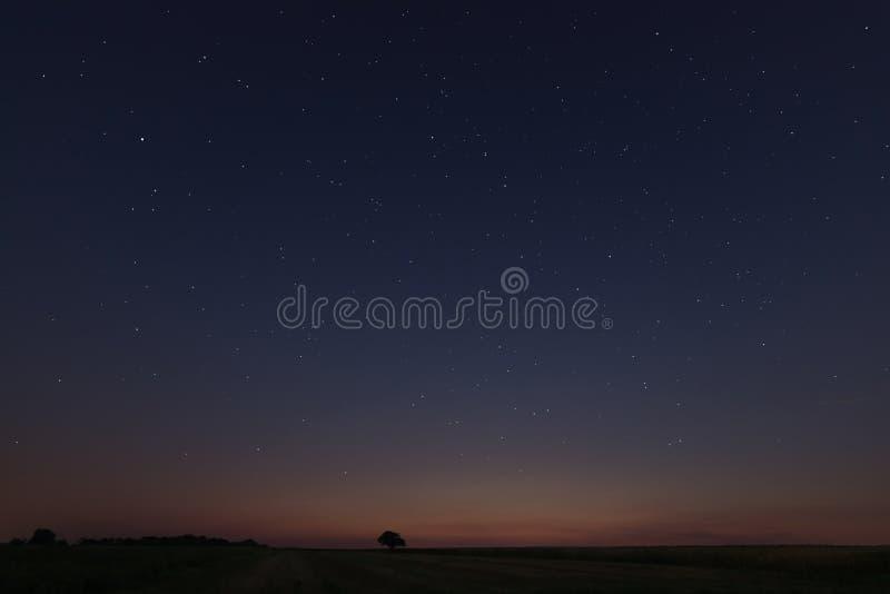 Härligt stjärnafält på solnedgången arkivbilder