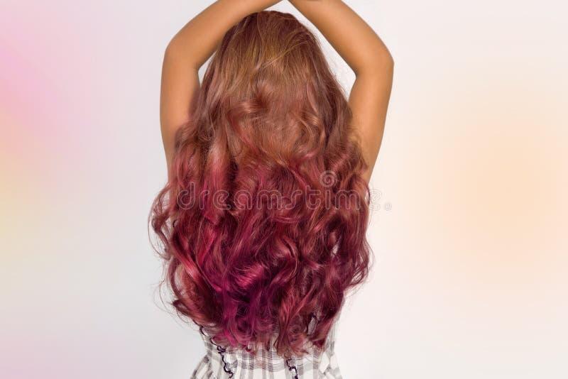 Härligt sunt naturligt hår Skönhethår royaltyfria foton