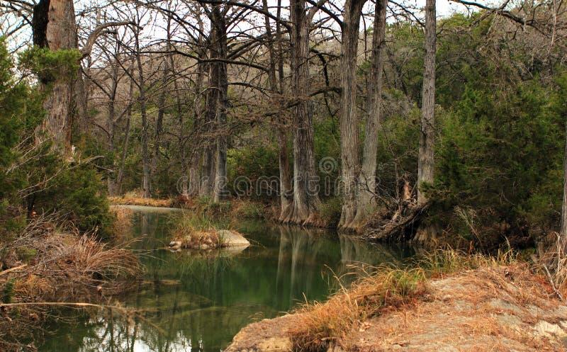 Härligt tidigt vårlandskap i Texas arkivfoton