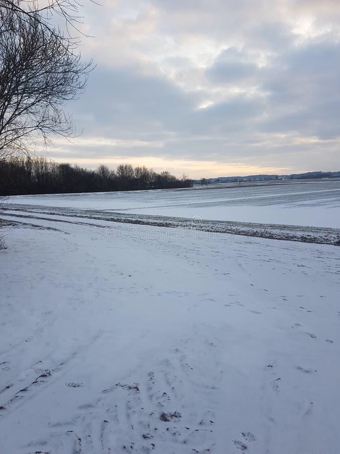 Härligt tyskt vinterlandskap arkivbild