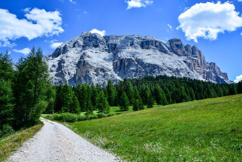 Härligt vagga lokaliserat i italienska dolomites som kallas Armentara arkivfoto