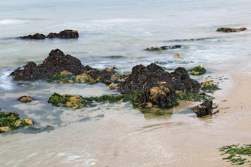 Härligt vaggar bildande på Stilla havet nära Half Moon Bayen royaltyfri bild