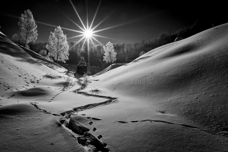 Härligt vinterberglandskap, Rumänien arkivfoto