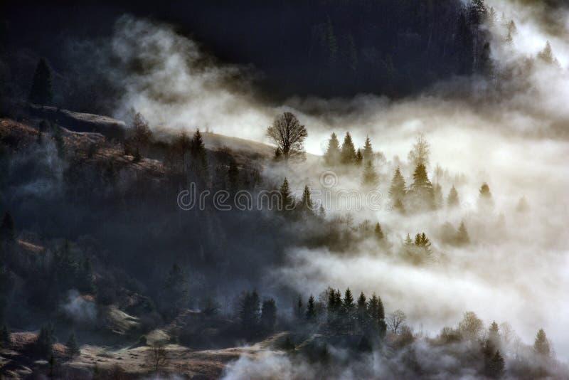 Härligt vinterlandskap i bergen fotografering för bildbyråer