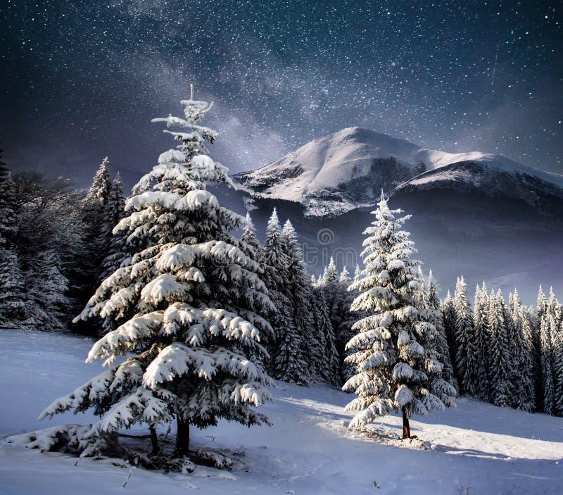 Härligt vinterlandskap i de Carpathian bergen Vibrerande natthimmel med stjärnor och nebulosa och galax djup sky arkivbild
