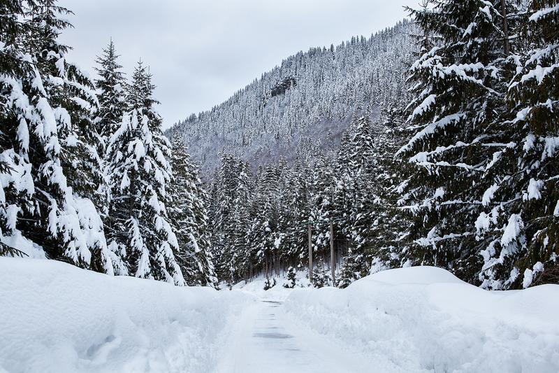 Härligt vinterlandskap med blandad snö royaltyfri fotografi