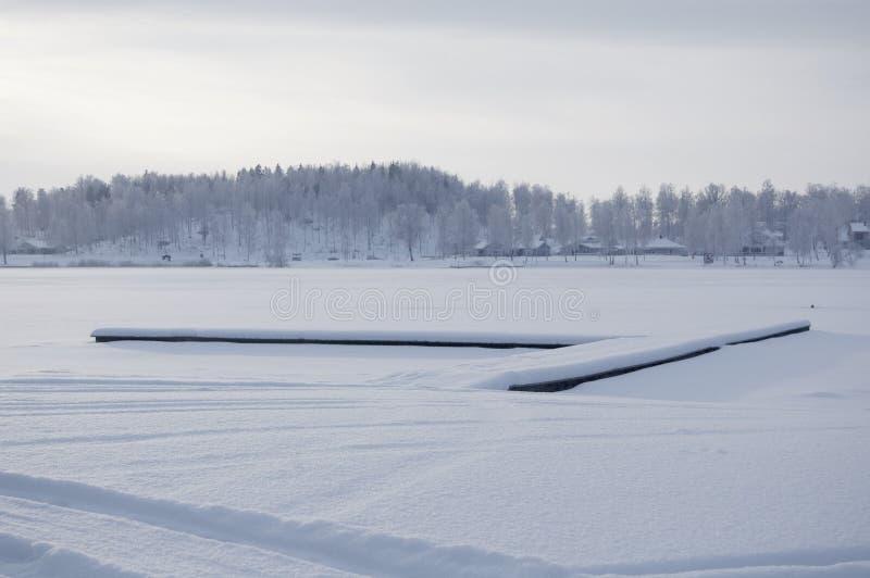 Härligt vinternärmare detaljfoto Djupfryst sjö på vintertid Foto med den härliga skogen i bakgrunden och en skeppsdocka som ligge arkivfoto