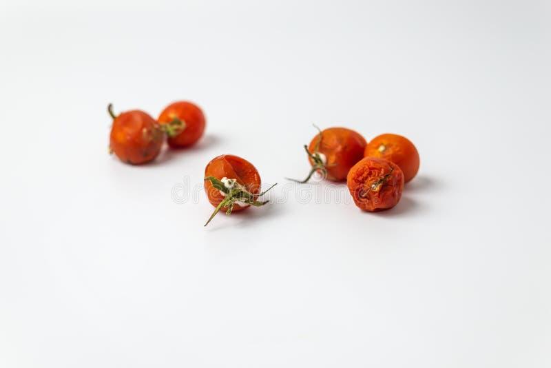 Hässliche Kirschtomate mit Form stockbild