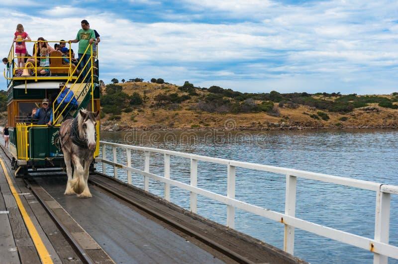 Häst dragen spårvagn på vägen till granitön arkivbild