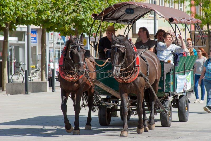Häst dragen vagn - den Bayreuth staden turnerar royaltyfria bilder