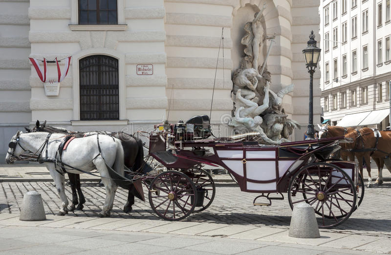 Häst-drivande vagn arkivbild