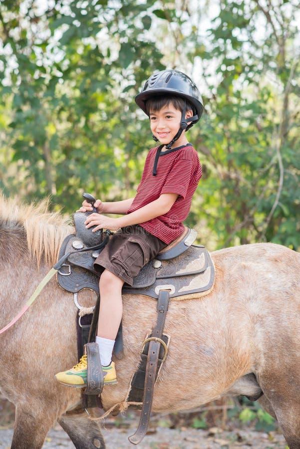 Häst för pysridningutbildning royaltyfri bild