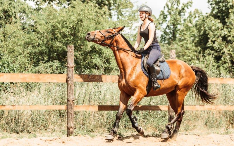 Häst för ridning för kvinnajockeyutbildning En cyklist- eller cyklistridning längs en konkret cykelbana royaltyfria foton