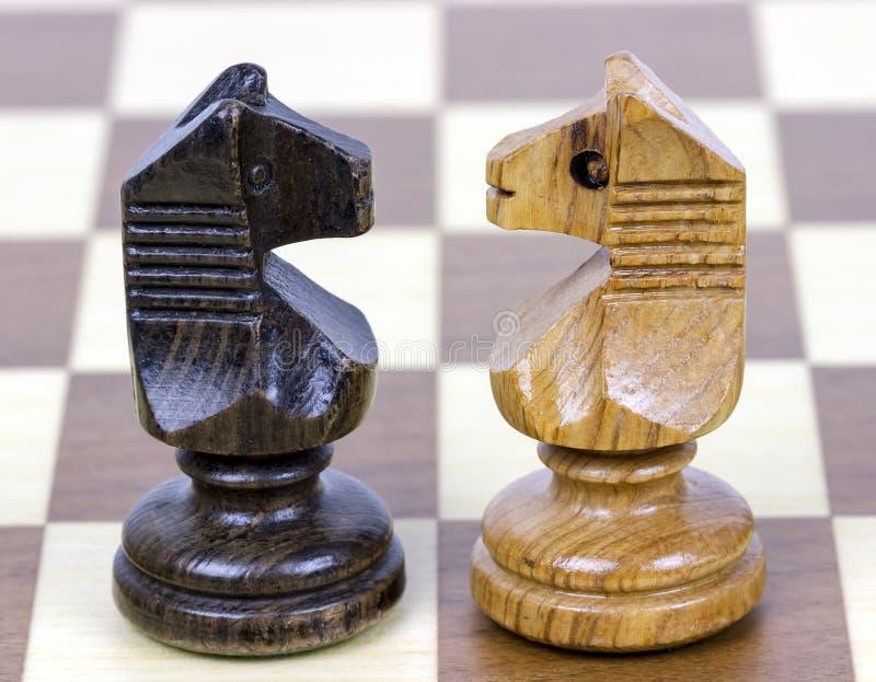 Häst för schack två royaltyfri bild