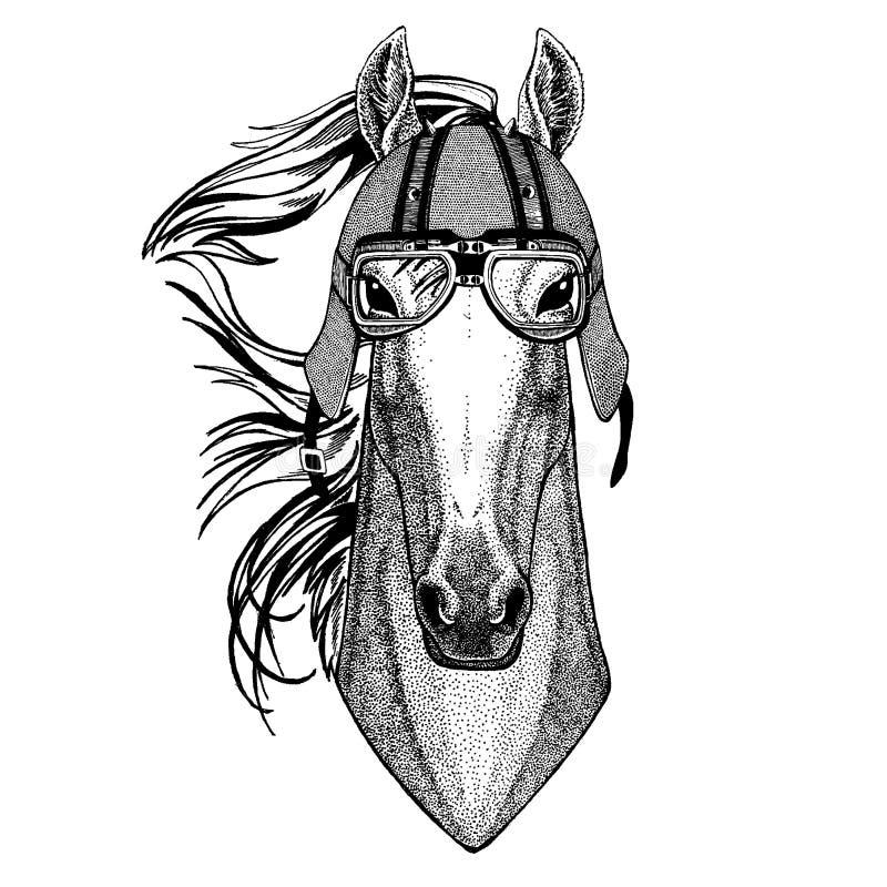 Häst hoss, riddare, springare, harhund som bär en motorcykel, aero hjälm Utdragen bild för hand för tatueringen, t-skjorta, emble royaltyfri illustrationer