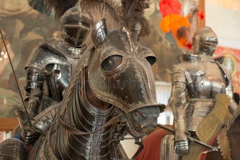 Häst i harnesk royaltyfri foto