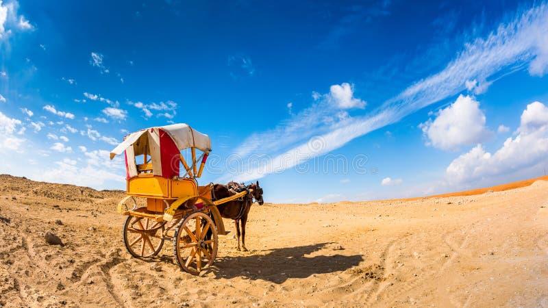 Häst med vagnen royaltyfria foton